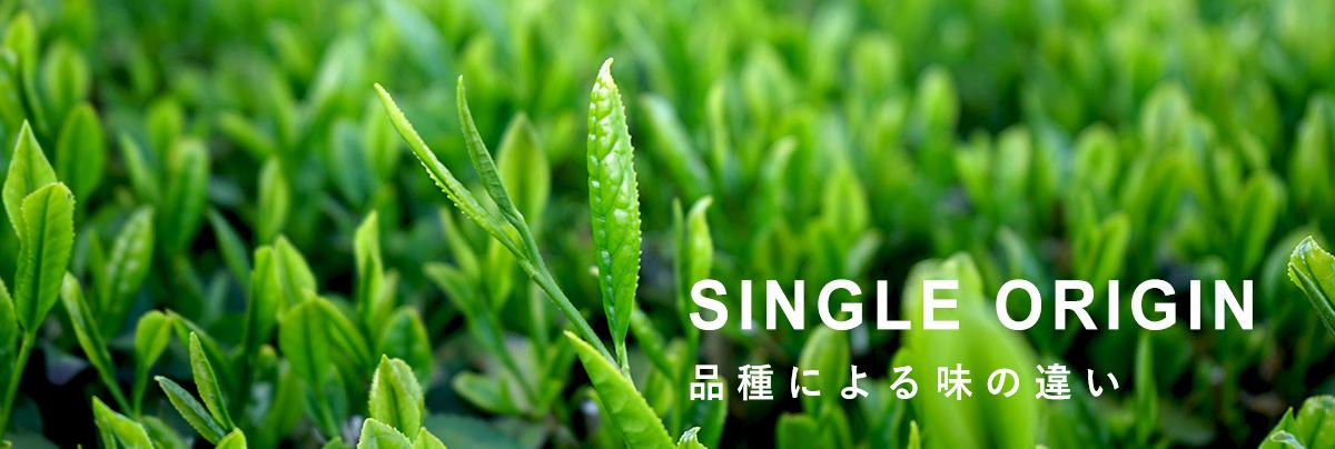 シングルオリジン お茶の品種による味の違い